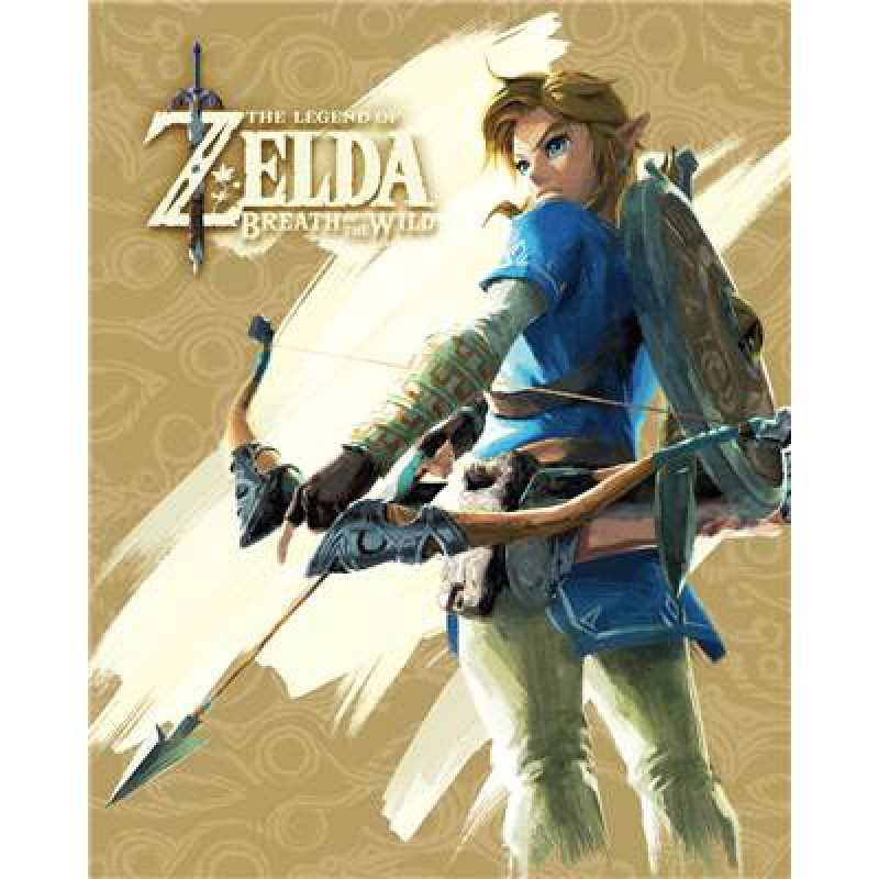 Cadre 3d zelda breath of wild aventure divers for Achat maison zelda