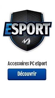 accessoires esport PC