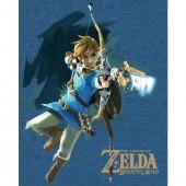 Cadre 3D - Zelda Breath of The Wild - Link