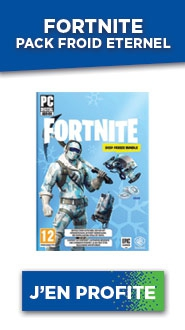 FORTNITE Pack Froid Eternel PC